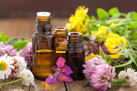 29951668-essential-oils-and-medical-flowers-herbs