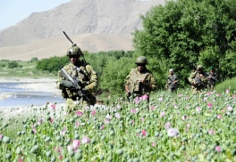 "Caption: Captain Julian Hohnen, Officer Commanding a combined Australian and Afghan Army patrol base in the Baluchi Valley Region mentors Afghan National Army Officer, Lieutenant Farhad Habib. Mid Caption: All across the MTF1 area of operations partnered mentoring is being conducted on mounted and dismounted combined patrols with ever increasing security presence being experienced by local communities from the Southern Baluchi Valley to the Northern Chora reaches as well as east through the Mirabad. Ongoing combined ANA and MTF1 security operations involving infantry, combat engineer and reconnaissance capabilities in Oruzgan have achieved multiple layers of effects including an increased rate of IED ""find and render safe"" percentages, increased cache finds, and enhanced trust fostered within local communities. Deep Caption: Operation SLIPPER is Australia's military contribution to the international campaign against terrorism, piracy and improving maritime security. Under this operation our forces contribute to the efforts of the North Atlantic Treaty Organisation (NATO) - led International Security Assistance Force (ISAF) in Afghanistan. ISAF seeks to bring security, stability and prosperity to Afghanistan and aims to prevent Afghanistan again becoming a safe haven for international terrorists. Operation SLIPPER also supports the United States led International Coalition Against Terrorism (ICAT) in the broader Middle East."